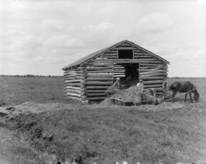 Photo 35 Pioneers