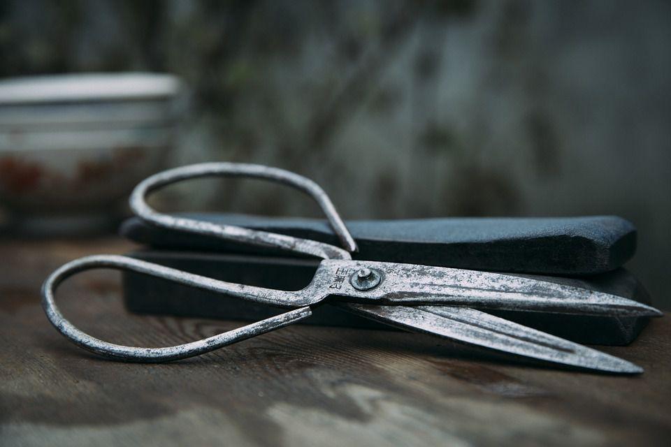 scissors-1534065_960_720